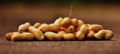 Peanut butter allergies